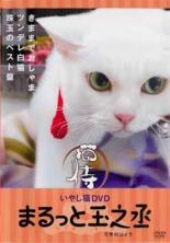 趣味 年末年始大決算 ギフ_包装 実用 中古 DVD まるっと玉之丞 いやし猫DVD 猫侍 レンタル落ち