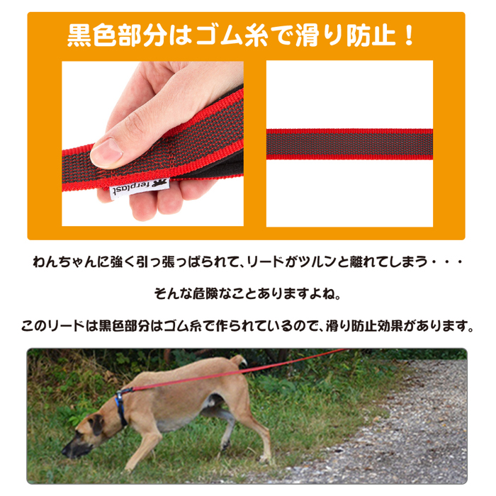 ファンタジーワールド デイトナ ガミー マティック リード G25/120 レッド 77180217 (犬用リード)