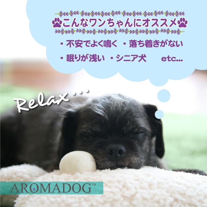 ファンタジーワールド アロマドッグ ビッグヘッド グリーン WB16954-2 (犬用おもちゃ)