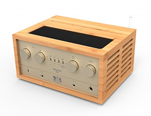 iFi コンポ Audio Retro Stereo 50