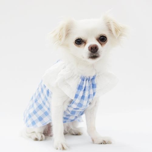 犬服工房 型紙 ティアードスリーブスモック型紙 マーケティング eco印刷 送料無料 一部地域を除く 胴長小型犬向け
