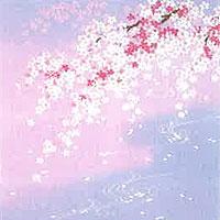 ちりめん友仙正絹風呂敷【しだれ桜に流水(薄紫)】2巾 約68×68cm