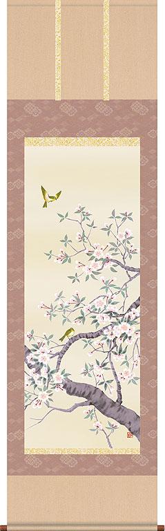 掛軸(掛け軸) 桜花 北山歩生作 尺五立 約横54.5cm×縦190cm【送料無料】 b304-20