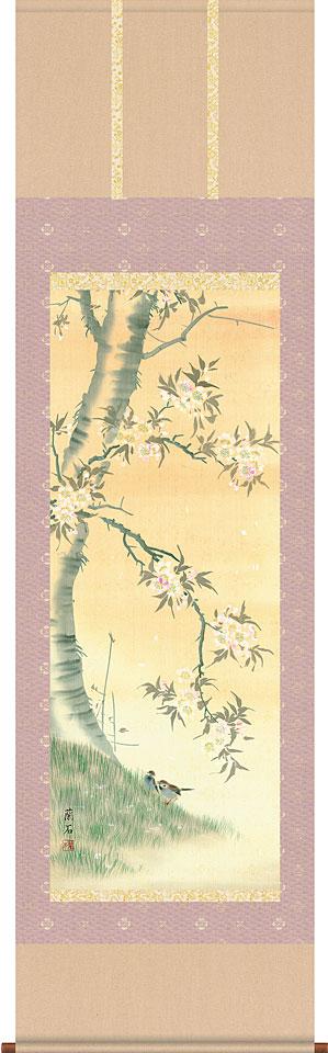 掛軸(掛け軸) 桜花 高見蘭石作 尺五立 約横54.5cm×縦190cm【送料無料】d8707