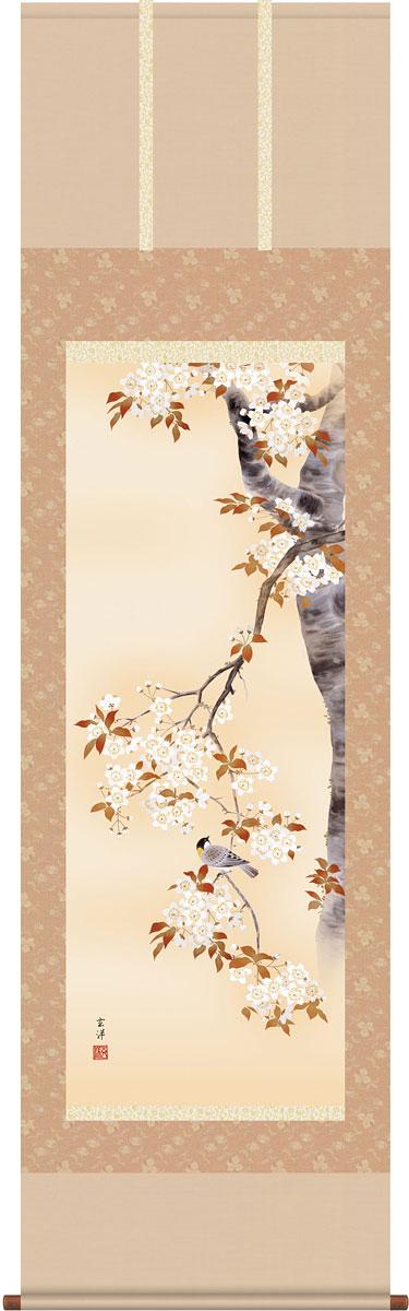 掛軸(掛け軸) 桜花 近藤玄洋作 尺五立 約横54.5cm×縦190cm【送料無料】g4095