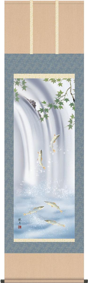 掛軸(掛け軸) 夏用 楓に鮎 森山観月作 尺五立 約横54.5cm×縦190cm【送料無料】g4099