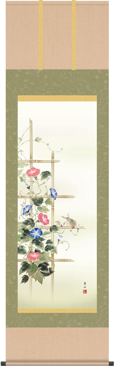 掛軸(掛け軸) 夏用 朝顔 緒方葉水作 尺五立 約横54.5cm×縦190cm【送料無料】g4105