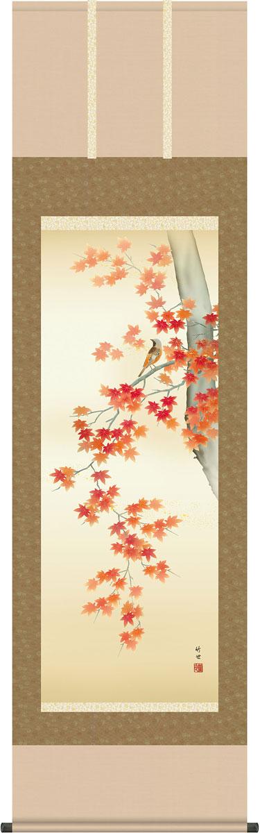 掛軸(掛け軸) 秋用 紅葉に小鳥 田村竹世作 尺五立 約横54.5cm×縦190cm【送料無料】g4113