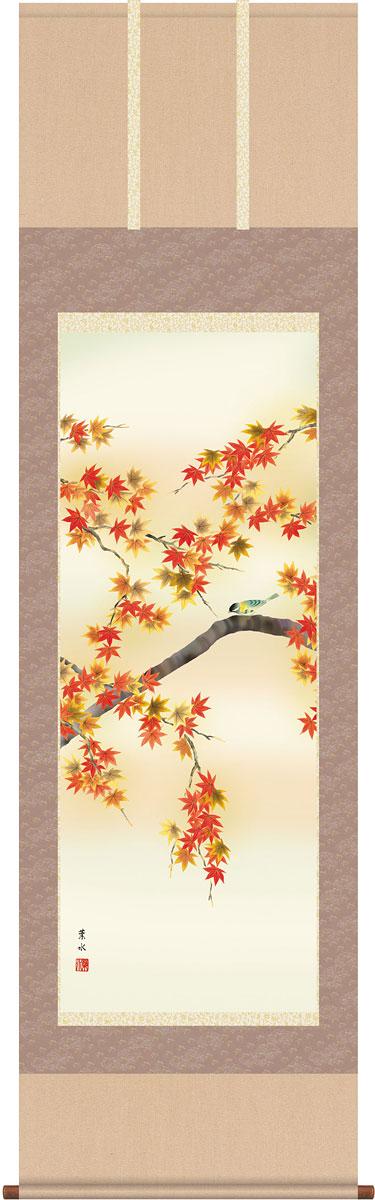 掛軸(掛け軸) 秋用 紅葉に小鳥 緒方葉水作 尺五立 約横54.5cm×縦190cm【送料無料】g4114
