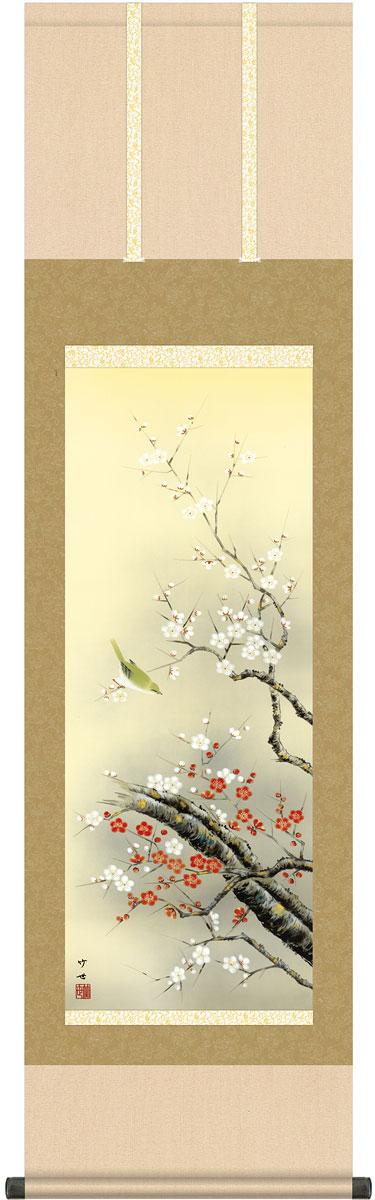 掛軸(掛け軸) 春用 紅白梅に鶯 田村竹世作 尺三立 約横44.5cm×縦164cm g4563