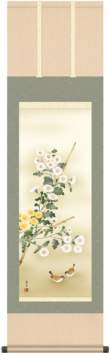 掛軸(掛け軸) 秋用 菊花 吉井蘭月作 尺三立 約横44.5cm×縦164cm g4588