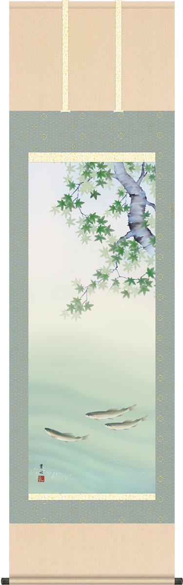 【スーパーセール10%オフ】掛軸(掛け軸) 夏用 四季彩艶 楓に鮎 緒方葉水作 尺五立 約横54.5cm×縦190cm【送料無料】g4602