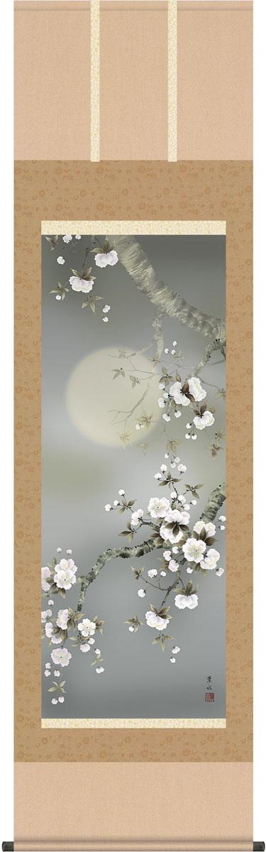 【スーパーセール10%オフ】掛軸(掛け軸) 春用 夜桜 緒方葉水作 尺五立 約横54.5cm×縦190cm【送料無料】g9901