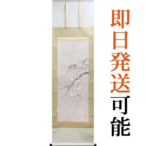 掛軸(掛け軸) 春用 桜に小禽 北条静香作 尺五立 約横54.5cm×縦190cm【送料無料】p9640