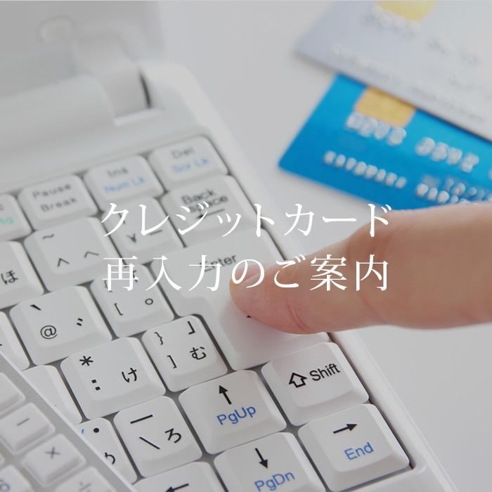 安全に情報をご入力いただけます 価格 クレジットカードデータ情報ご入力 大注目