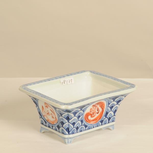 盆栽小鉢:屯洋(とんよう) 長方鉢 9.6cm【現】*Tonyou