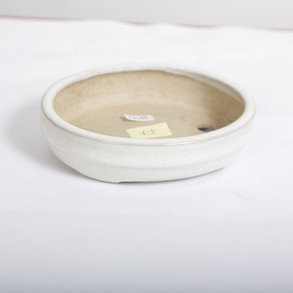 和雀 白釉楕円 13.7cm【現】