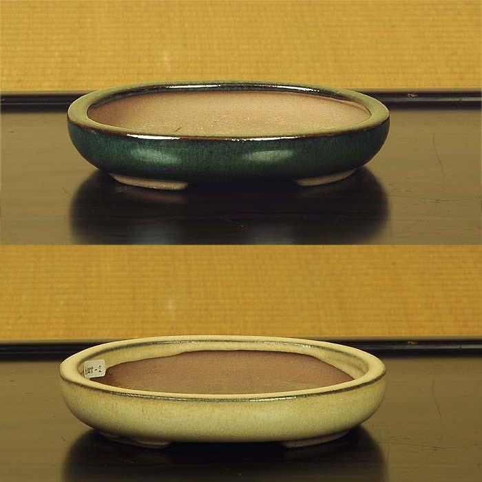 中国楕円浅鉢 15cm h1288