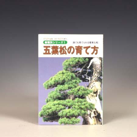本:五葉松の育て方 蔵 人気激安