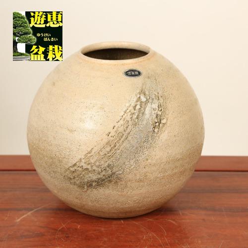 花瓶:信楽焼丸花瓶 6.5号