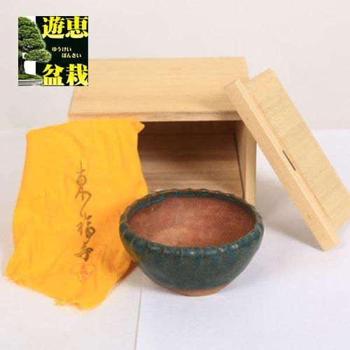盆栽小鉢:初代 東福寺 丸鉢 10.2cm【現品】