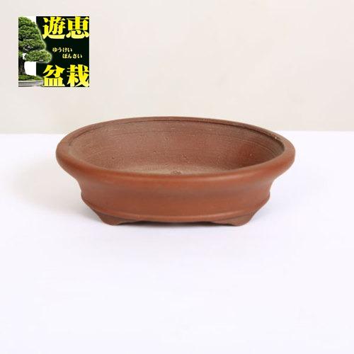 常滑作家:柴勝 楕円鉢 10.7cm 【現品】