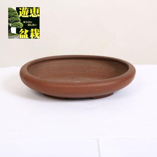 常滑作家:柴勝 楕円鉢 17.6cm 【現品】