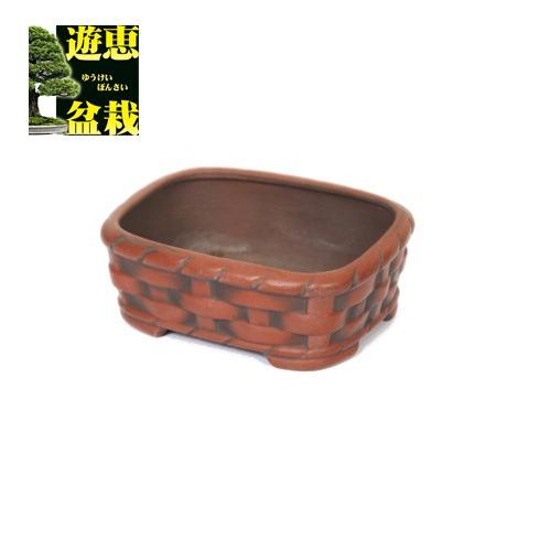 盆栽小鉢:美芸(常滑) 撫角竹アミ浅鉢 10cm