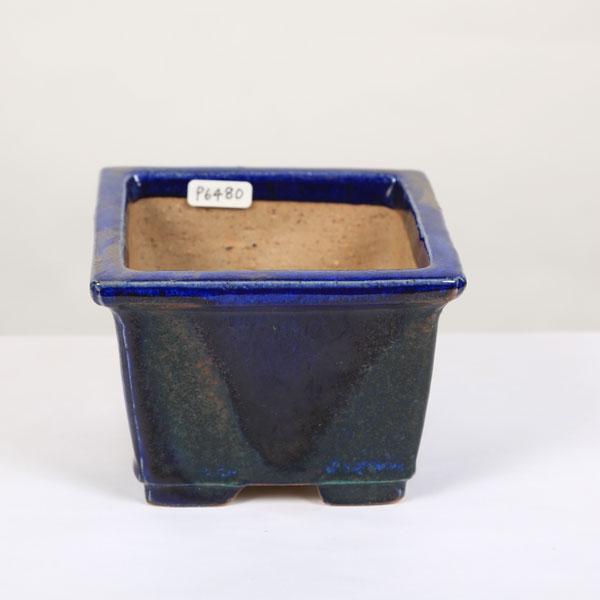 現代小鉢:樹晃 驚きの値段で 正方鉢 現 10.7cm 休日