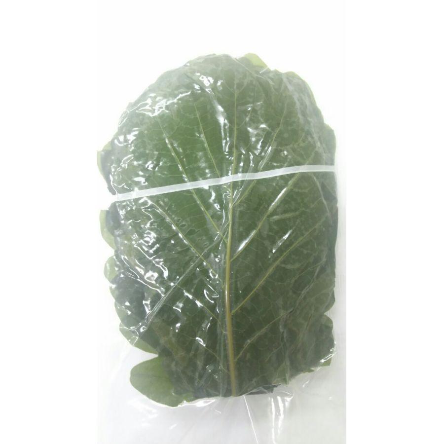 真空 柏の葉(緑のSサイズ)50枚(枚10.5-11cm)×10束×6P(P2000円税別)業務用 ヤヨイ 各サイズあり、茶もあり