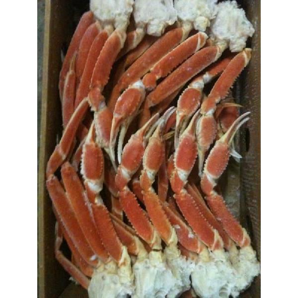 身入抜群 冷凍ボイルずわい蟹 3L(肩)5kg(kg3770円税別)(約16肩)ヤヨイ 業務用