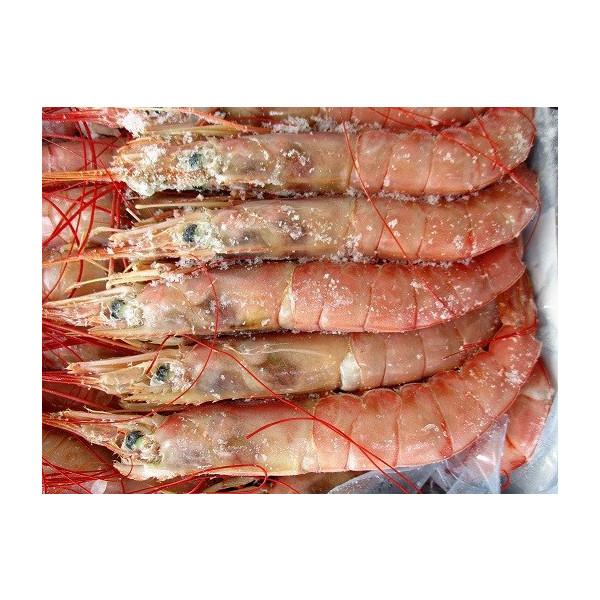 冷凍 アルゼンチン甘海老(L3)2kg(60尾~80尾)×6枚 (枚2350円税別) L1、L2も取り扱いあり 業務用 ヤヨイ