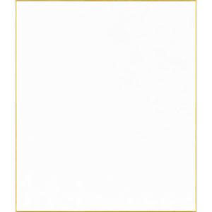 F10号 色紙 画仙紙 特上 手漉和画仙 (10枚パック) キャッシュレス 5%還元対象
