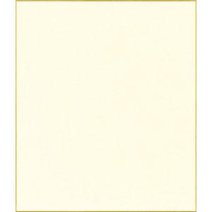 【大感謝祭×ポイントアップ祭り! 12/19 20:00 ~ 12/26 1:59まで】 F10号 色紙 鳥の子紙 機械漉鳥の子紙 (10枚パック) キャッシュレス 5%還元対象