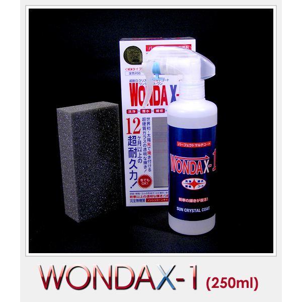 WONDAX(ワンダックス) ガラス質ボディ保護剤 WONDAX-1(ワンダックス・ワン) 250ml