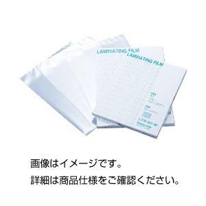 (まとめ)ラミネートフィルム A4用 入数:100枚【×3セット】