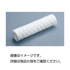 (まとめ)カートリッジフィルター100μm250mm10本【×3セット】