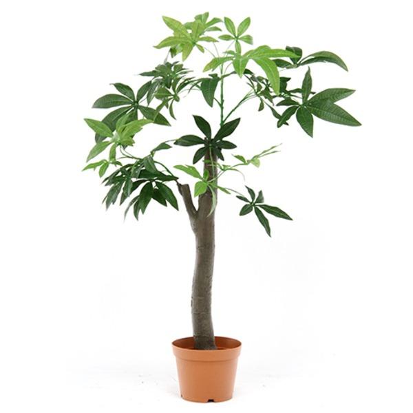 観葉植物/フェイクグリーン 【パキラ 朴の木タイプ】 8号鉢対応 幅90cm 〔リビング ガーデニング〕 緑
