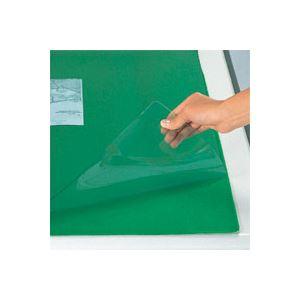 (業務用セット) スカイメルト 軟質ビニール製 ダブル(グリーン下敷付) CR-SW7N-G 1枚入 【×2セット】 緑