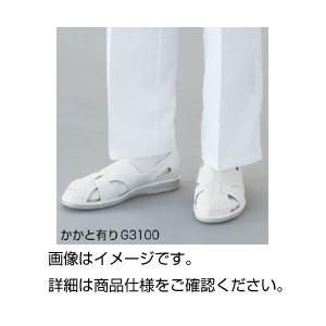 (まとめ)クリーン制電サンダル G3100 25cm【×3セット】