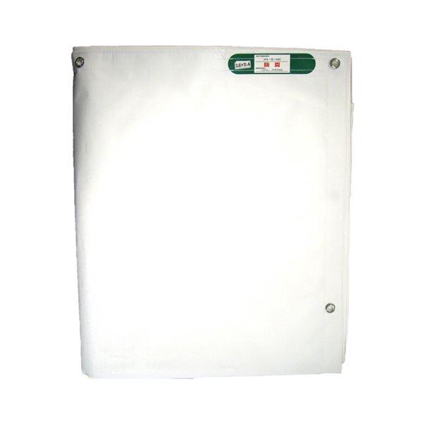萩原工業 PE防炎シート 3.6m×5.4m