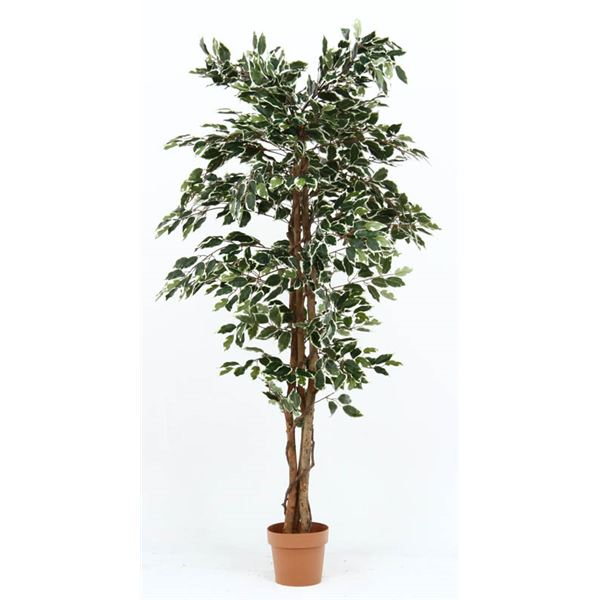 観葉植物/フェイクグリーン 【フィカス B】 7号鉢対応 幅90cm 〔リビング ガーデニング〕 緑