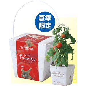 (まとめ) ベジコンテナ トマト 【×15セット】