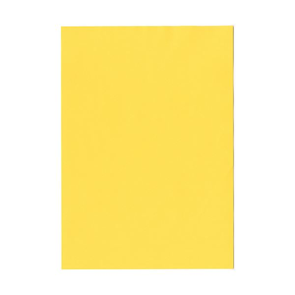 (まとめ)北越コーポレーション 紀州の色上質A4T目 薄口 濃クリーム 1冊(500枚) 【×2セット】