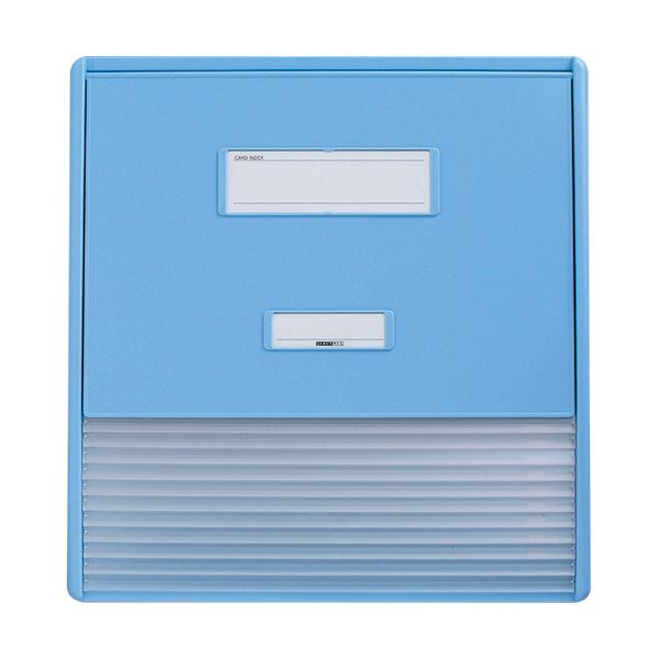 リヒトラブ カラーカードインデックスA3(A4タテ2面)11ポケット ブルー HC113C-2 1冊 青