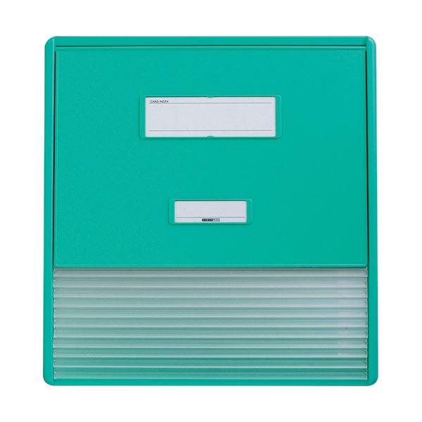 リヒトラブ カラーカードインデックスA3(A4タテ2面)11ポケット グリーン HC113C-3 1冊 緑