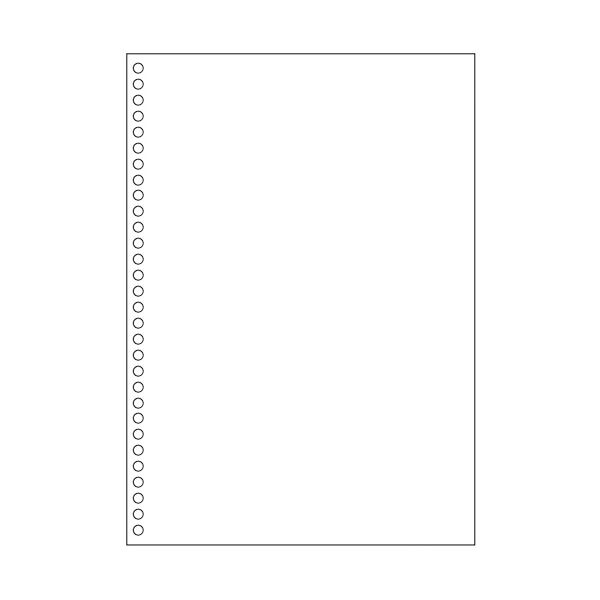 TANOSEEマルチプリンタ帳票(FSC森林認証紙) A4白紙 30穴 1セット(1000枚:500枚×2箱)