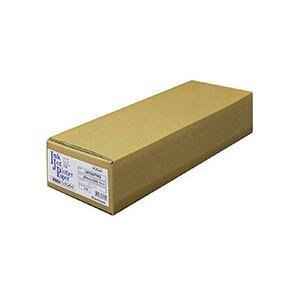 桜井インクジェット用普通紙64プレミアムホワイト 841mm×50m IJN64PWA 1箱(2本) 白