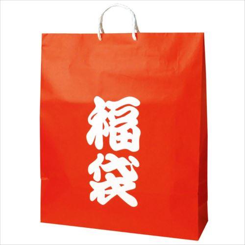 ササガワ タカ印 50-5642 手提げバッグ 福袋 超特大 50枚  【abt-1178884】【APIs】