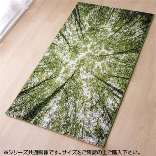 トルコ製 ウィルトン織カーペット 『ガイア RUG』 約80×140cm 2346509  【abt-1339687】【APIs】